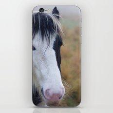 Black and White Horse Portrait iPhone & iPod Skin