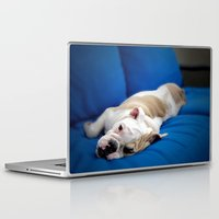 puppy Laptop & iPad Skins featuring Puppy by brushnpaper