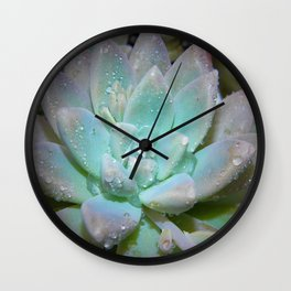 Pastel Succulent 2 Wall Clock
