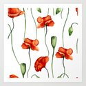 Poppies pattern by artcolours