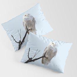 Lofty Vision (Snowy Owl) Pillow Sham