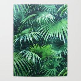 Tropical Botanic Jungle Garden Palm Leaf Green Poster