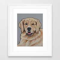 golden retriever Framed Art Prints featuring Golden Retriever  by Cheney Beshara
