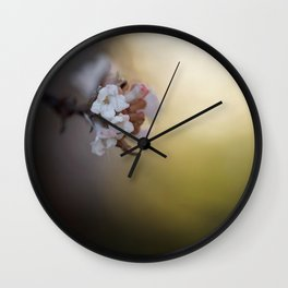 The Beauty of Levity. Wall Clock