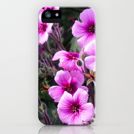 Beauty on The Rock iPhone Case