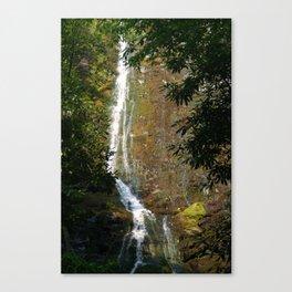 Mingo Falls 2 Canvas Print