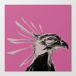 Secretary Bird Canvas Print
