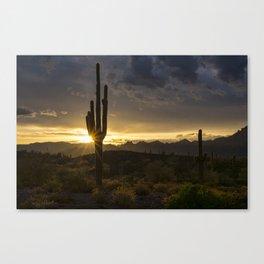 Desert Dawn on the Horizon Canvas Print