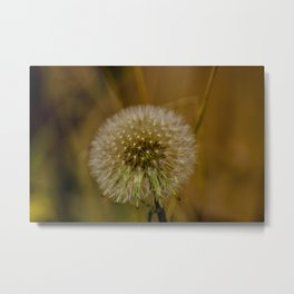 Dreams Metal Print