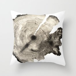 cross-section II Throw Pillow