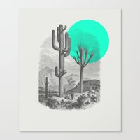 cacti Canvas Prints featuring Cacti by Zeke Tucker