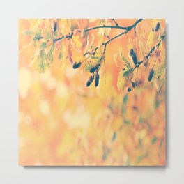 Oak nature photography Metal Print