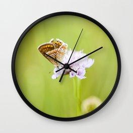 Butterfly on a flower Wall Clock