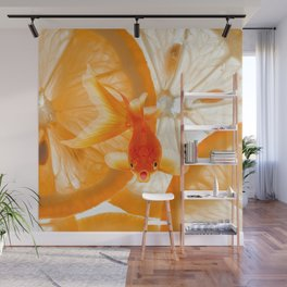 Orange Fish Wall Mural