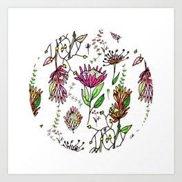Protea Flower Pink #homedecor Art Print