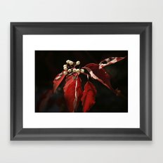 Berries Framed Art Print