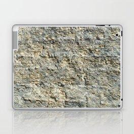 Mountain Rock Solid Texture Laptop & iPad Skin
