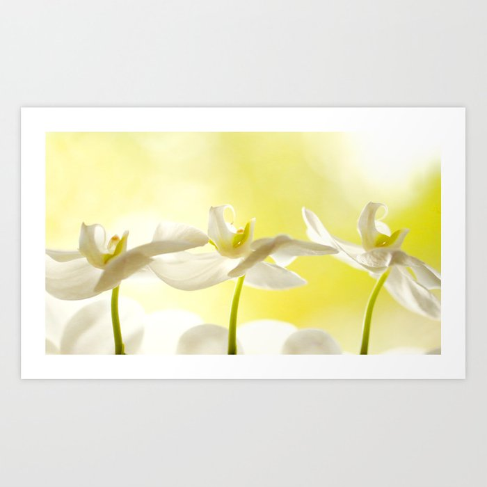 Three Ballerinas Art Print