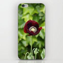 Opium Flower iPhone Skin