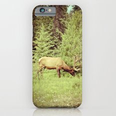 Time to Graze Slim Case iPhone 6s