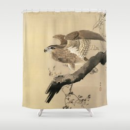 Hawk on the tree branch - Japanese vintage woodblock print Shower Curtain