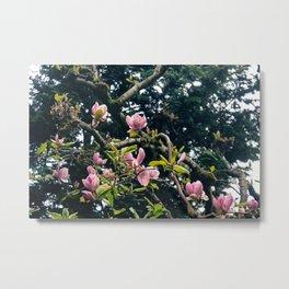 Flowers in Portland Metal Print