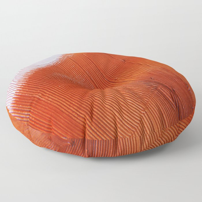 Snapshot Series #2: art through the lens of a disposable camera by Alyssa Hamilton Art Floor Pillow