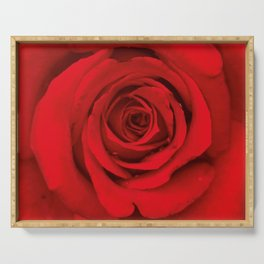 Lovely Red Rose Serving Tray