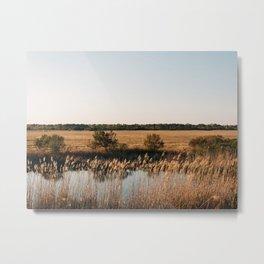 Chincoteague Marsh 03 Metal Print