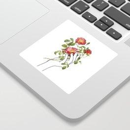 Flower in the Hand II Sticker