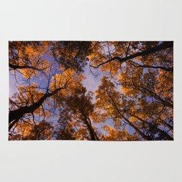 Tree Canopy Rug