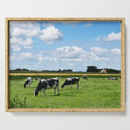Cows in meadow in Friesland (Holland) Serving Tray