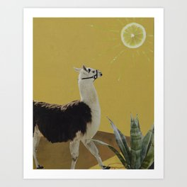 Lemon Sun Llama Art Print