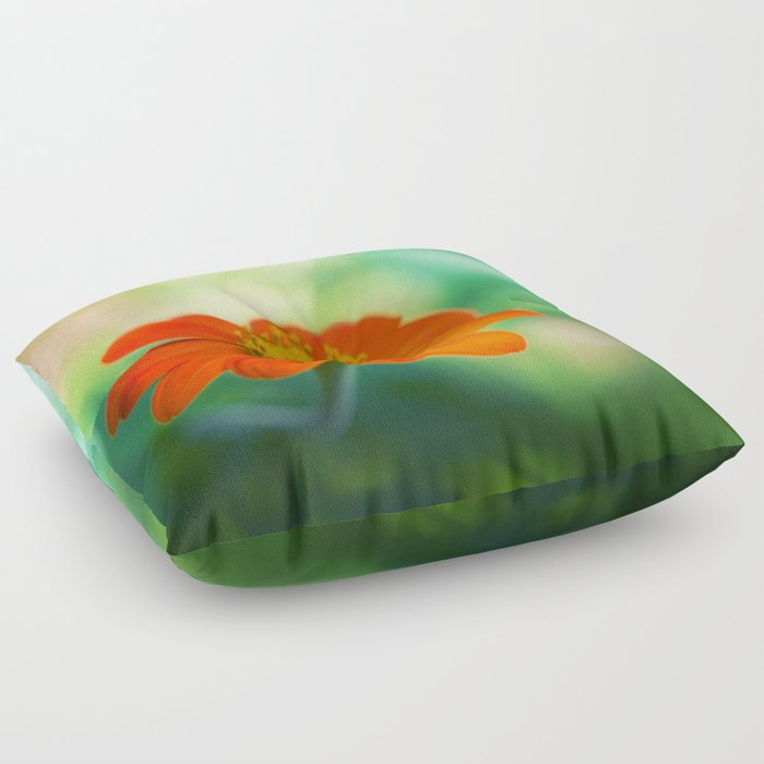 Dear Spring Floor Pillow