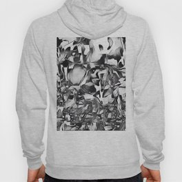 Lapwing in Disguise Hoody