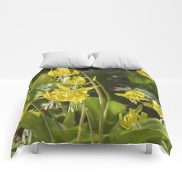 Glacier Lily Painterly Comforters