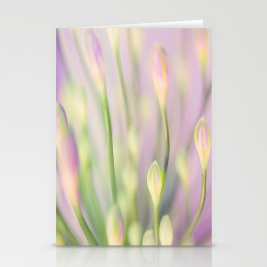 Lavender Nile Stationery Cards