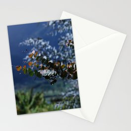 Decorative Eucalyptus Stationery Cards