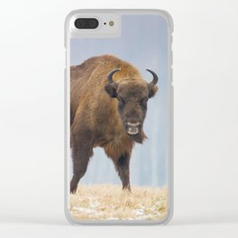 Cow and a calf Clear iPhone Case