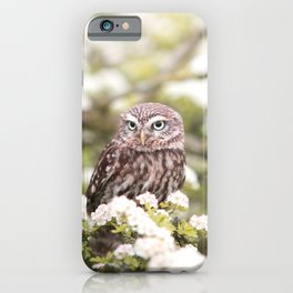 Chouette nature iPhone Case