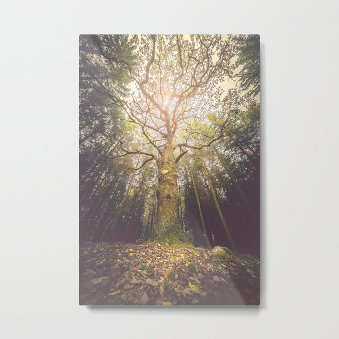The taller we are Metal Print