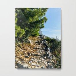 The Climb Metal Print