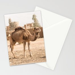 Desert Life With Camel - Sahara, Morocco Stationery Cards