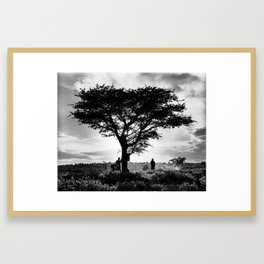 Maasai Acacia, Kenya  Framed Art Print