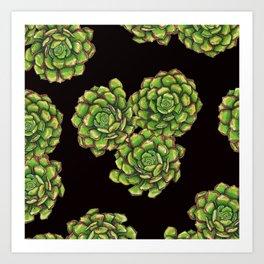 Green Succulents on Black Art Print