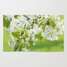 White cherry blossoms romance Rug
