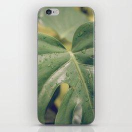 Philomena Philodendron iPhone Skin