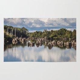 Dead Lakes Florida  Rug