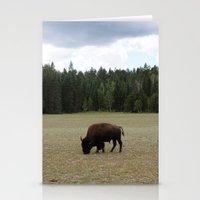 buffalo Stationery Cards featuring Buffalo  by Taylor Palmer