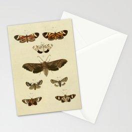 Vintage Moths Stationery Cards